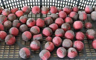 Рецепты приготовления бойлов в домашних условиях