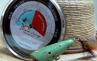 Барометр для рыбалки — что такое, зачем нужен? Лучшие модели и их цены