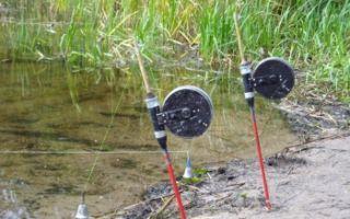Как сделать резинку для рыбалки с берега своими руками, техника ловли рыбы