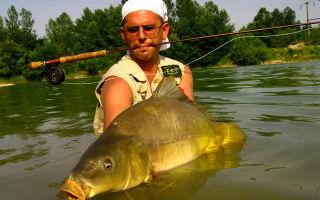 Рыбалка на карпа — видео обзор способов ловли