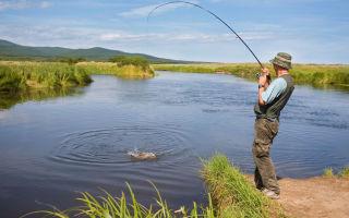 Рыбалка в рыбном хозяйстве «Раково»
