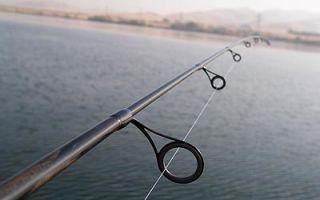 Выбор удочки для рыбалки — руководство для начинающих