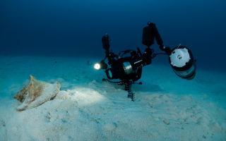 Как выбрать камеру для подводных съемок?
