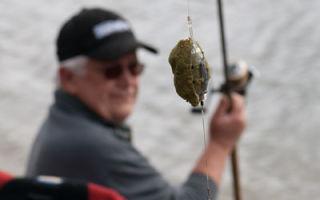 Ловля рыбы на кормушку фидером и на кольцо