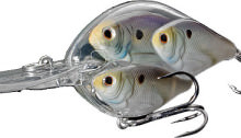 LIVETARGET Lures TSB65M Threadfin Shad Baitball Crankbait