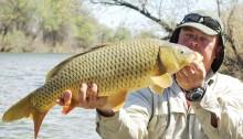 Рыбалка на карпа фидером