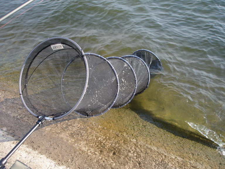 профессиональный садок для рыбалки