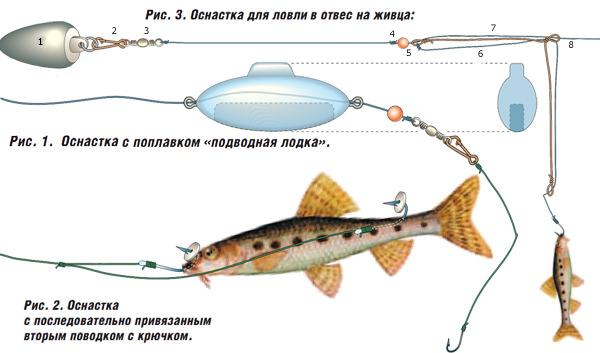 Оснастки для ловли на живца
