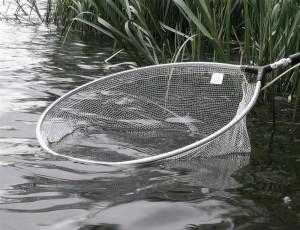 Сачок для рыбалки