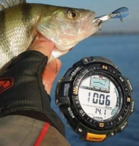 Барометр и пойманная рыба