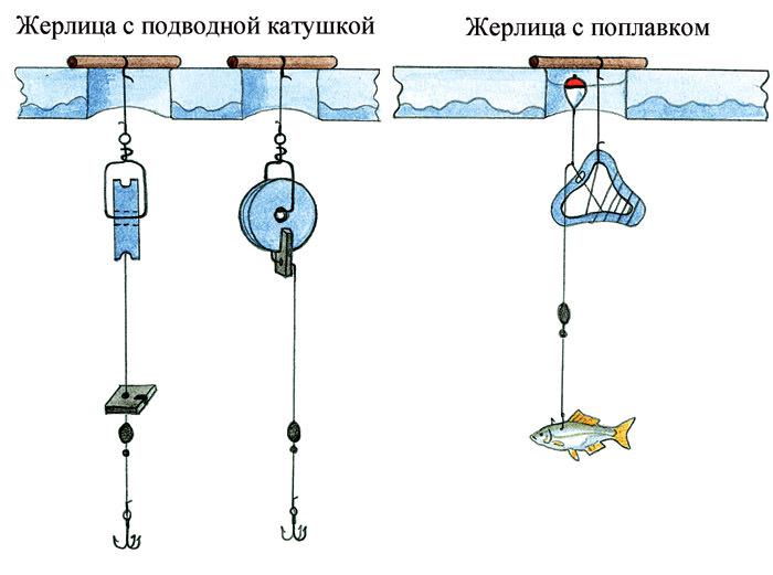 Как правильно сделать жерлицу для рыбалки