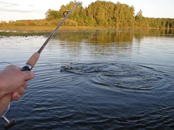 Мужчина ловит рыбу на спиннинг