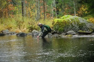 Мужчина ловит рыбу в реках Карелии