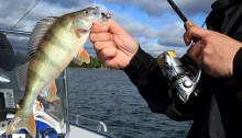 Мужчина поймал рыбу на спиннинг