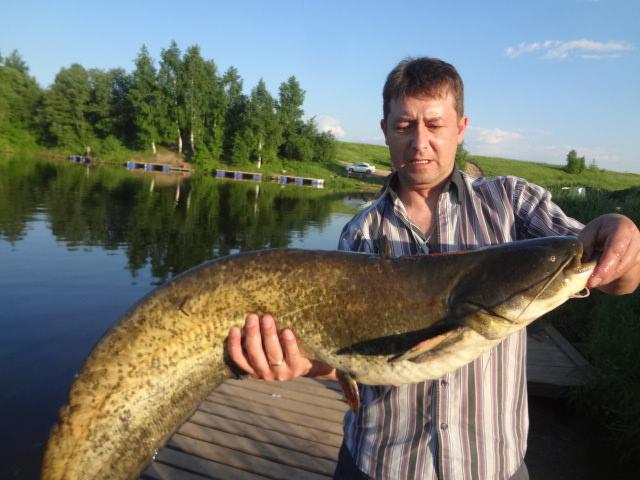 Мужчина поймал рыбу в озере в деревне Савельево
