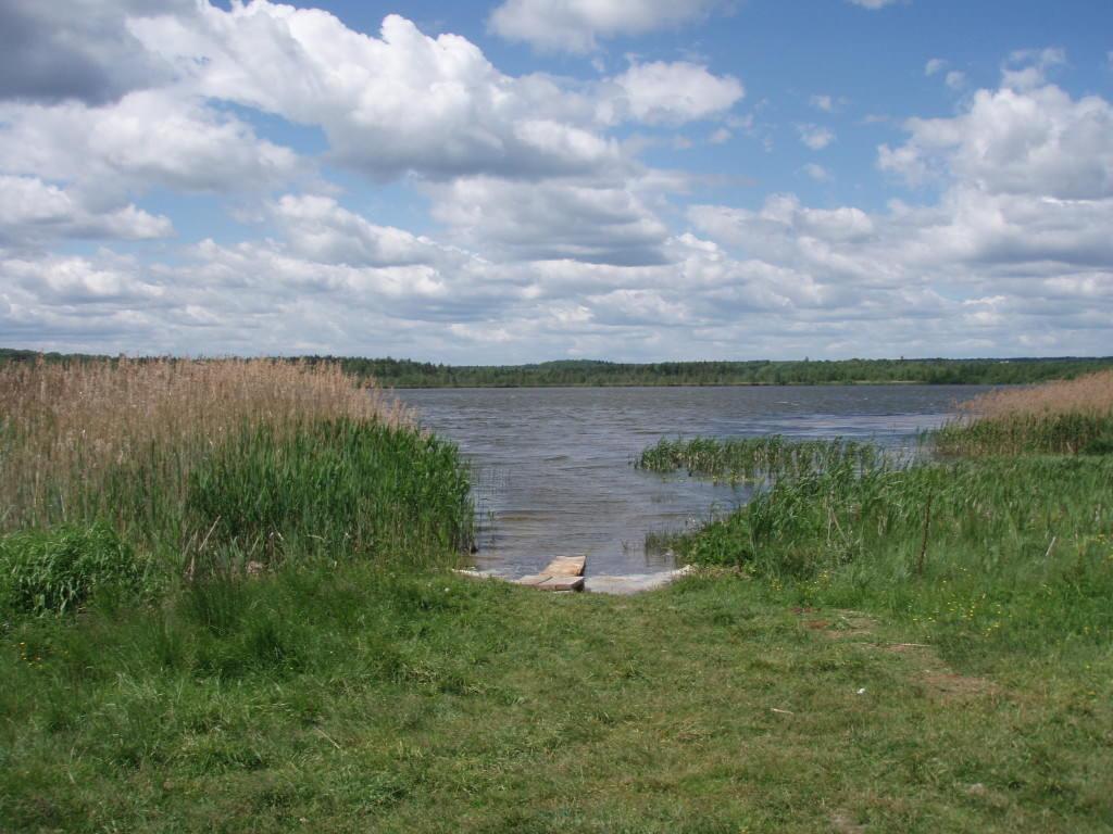 Озеро в деревне Савельево