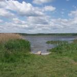 Озеро в Савельево