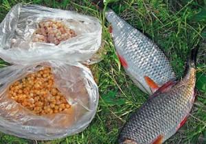 Пшеница и пойманная рыба