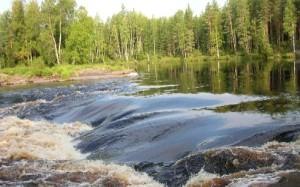Речка Шуя в Северной Карелии