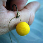 Снасть для карпа на руке рыбака