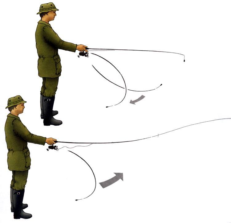 Как подобрать спиннинг и катушку для ловли окуня
