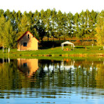"""Озеро в рыболовном клубе """"Золотой Сазан"""""""