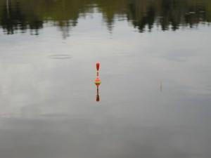 крупный поплавок