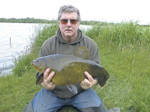 Крупный и широкий линь (гораздо чаще эта рыба более вытянута и менее широка)