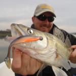 Ловля судака на спиннинг весной, летом и осенью - практическое руководство