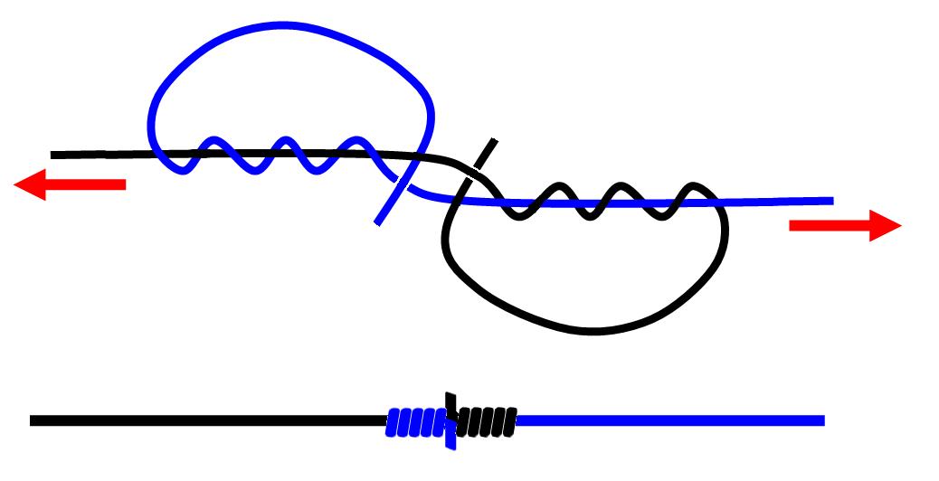 Схема связывания кровавого узла