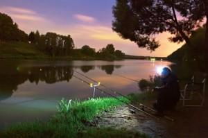 Ночная ловля сома фидером