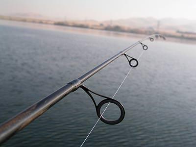 Выбор удочки для рыбалки для начинающих