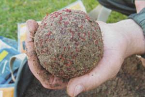 Прикормочный шар с мотылем для ловли на течении