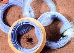 Интермедиальный шнур