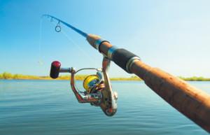 Ловля уклейки - снасти и способы ловли