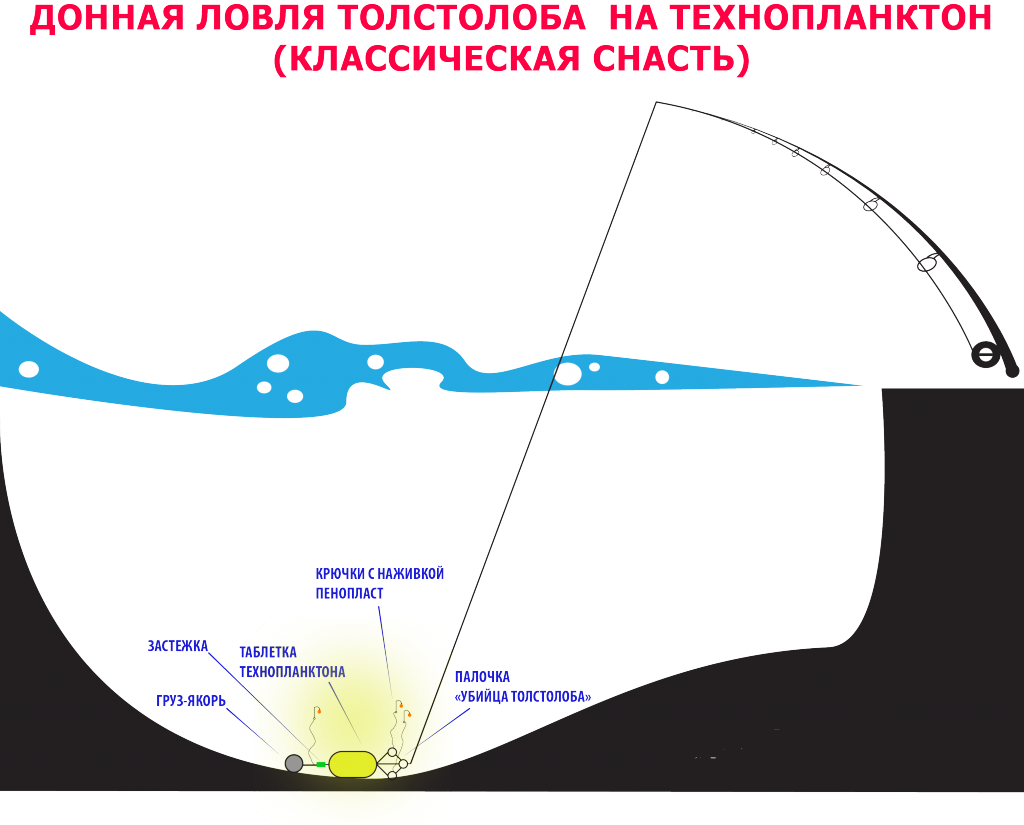 Донная ловля толстолоба на технопланктон