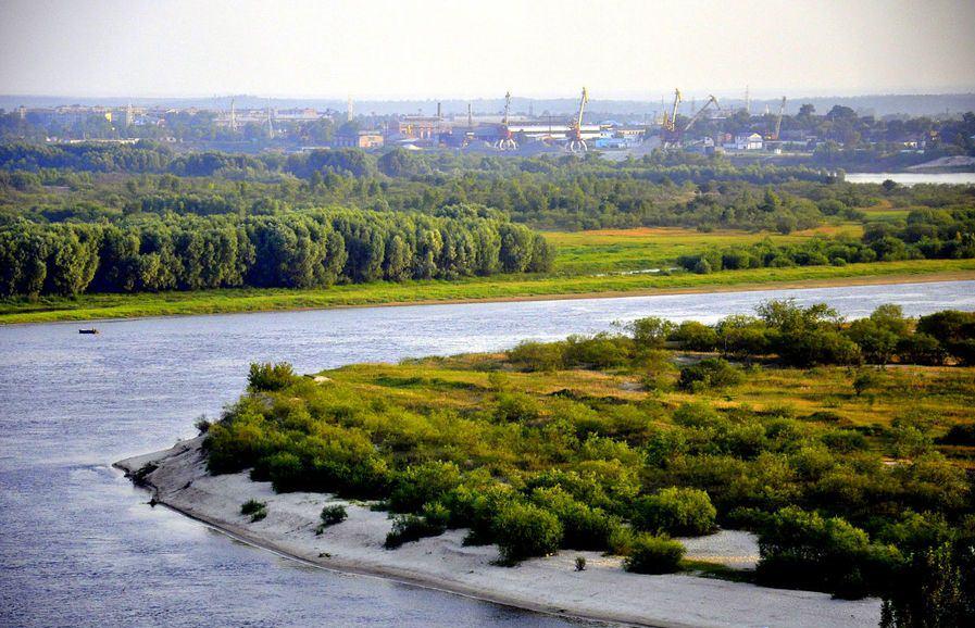 Припять считается одной из самых рыбных рек в Беларуси.