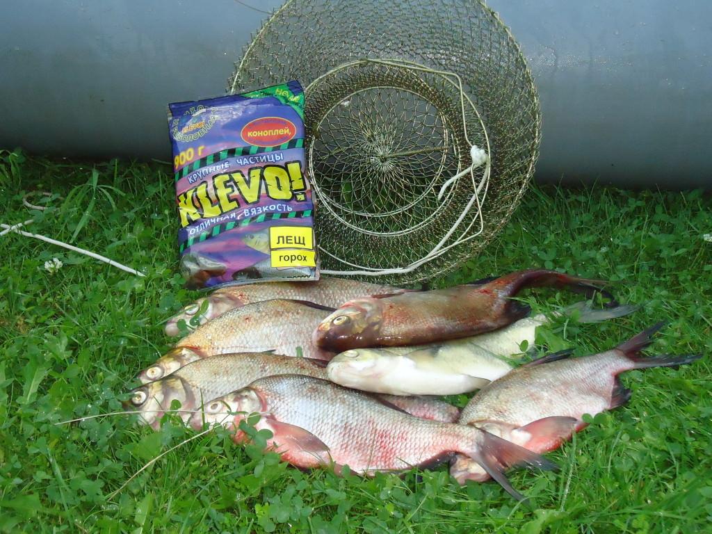 Рыболовный пластилин и рыба на траве