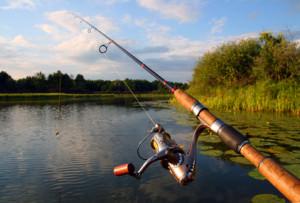 Как рыбачить на спиннинг - когда и кого можно ловить?